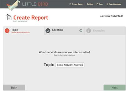 little bird-1